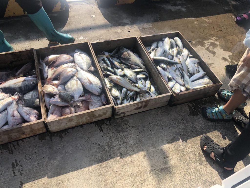 釣り海バーベキューフィッシングトランポ